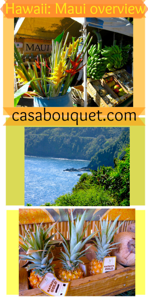 Overview of Maui visit
