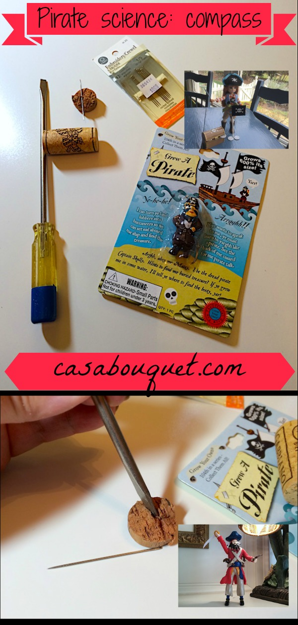 Pirate science activities are a great way to teach with a theme. A compass science project is part of science ideas for a pirate theme.