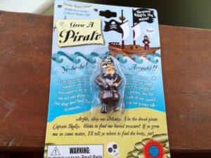 pirates - 1