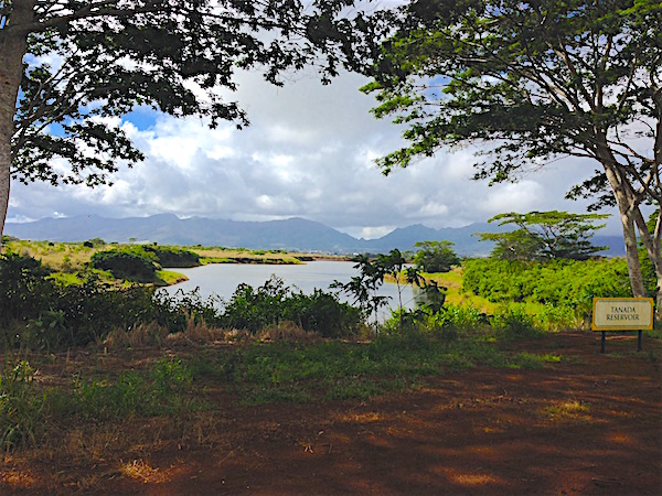 Central Oahu – Dole, Schofield, Kukaniloko, Manulele