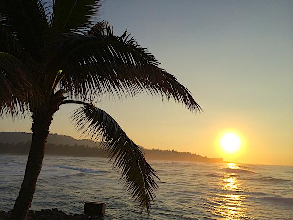 North Shore Oahu Activities