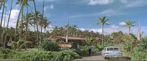 blue-hawaii-coco-palms