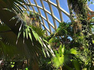 denver-botanic-garden-6