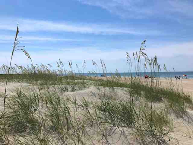 Atlantic Beach and Morehead City are great places to visit on the Crystal Coast of North Carolina on either side of Bogue Sound. Atlantic Beach has beautiful beaches and Fort Macon historic 1800s fort. Morehead City has a fun fishing dock, shopping, and restaurants.